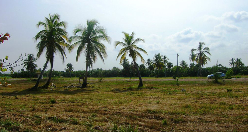 juanillo lots for sale 13 cap cana views